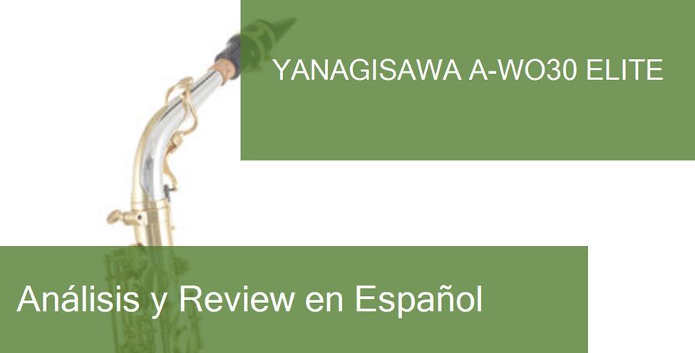 opinión Yanagisawa A-WO30