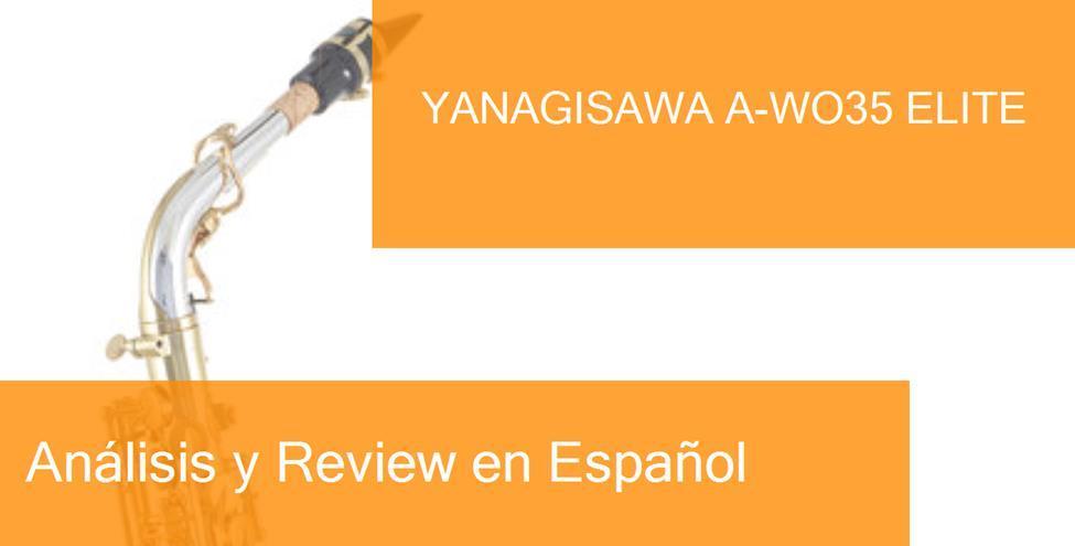 review yanagisawa-a-wo35