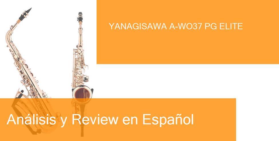 review yanagisawa-a-wo37-pg-elite