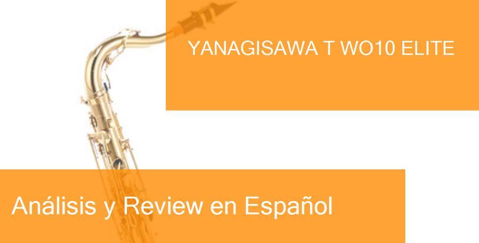 review yanagisawa-t-wo10