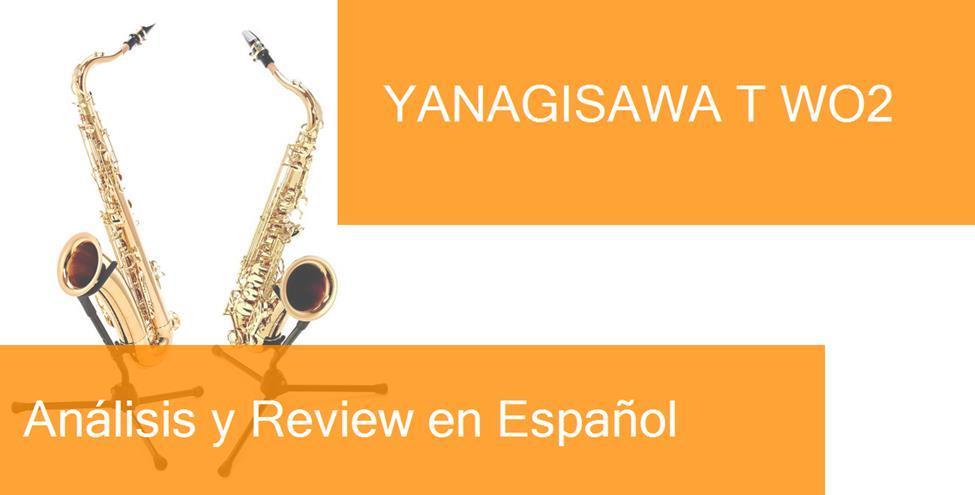 review yanagisawa-t-wo2-