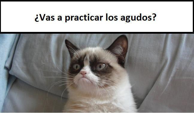 gato_cabreado_buscarinstrumentos