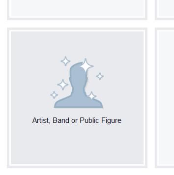 Elegir perfil artista