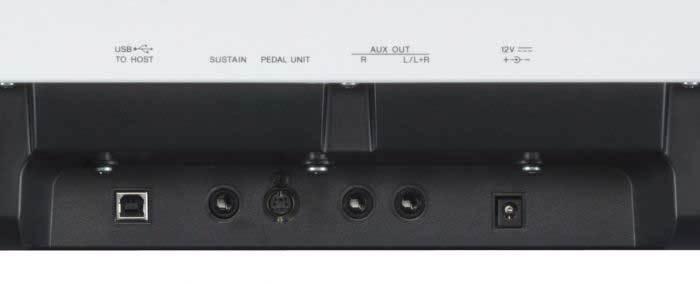 conexiones P125