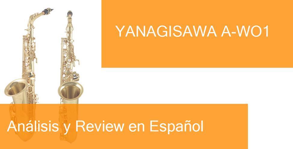 review yanagisawa-a-wo1