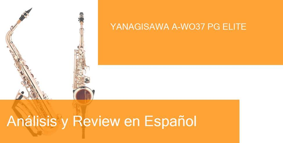 review yanagisawa-a-wo37-pg-elite
